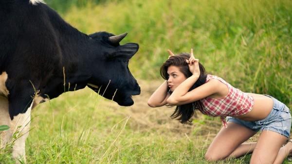 Смешная девушка и корова