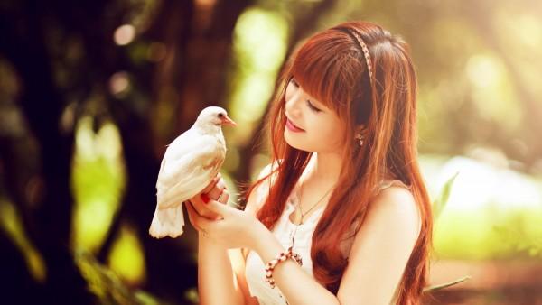 Красивая Азиатка держит в руках белую птичку обои hd