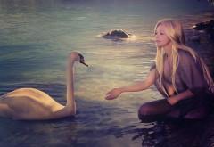 Девушка кормит лебедя на озере обои скачать