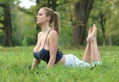 Девушка с натуральной грудью на рабочий стол