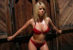 Пышно грудая блондиночка в красном купальнике обои hd