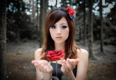 Девушка с красной розой картинки на рабочий стол