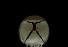 Фото девушки в трубе скачать бесплатно