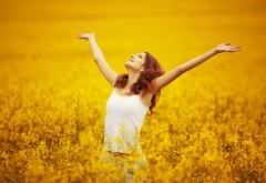 Настроение, Девушка, Свобода, Полевые цветы, радость, к�…