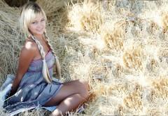 Блондинка на сеновале