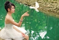 Девочка и голубь